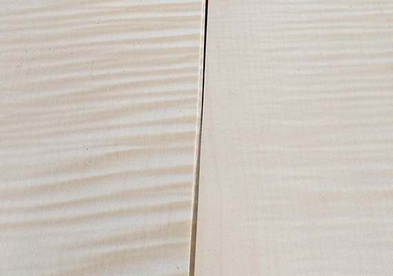 Maple frisé - wood essence ELITWOOD srl