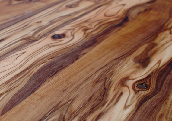 Olive tree - wood essence ELITWOOD srl