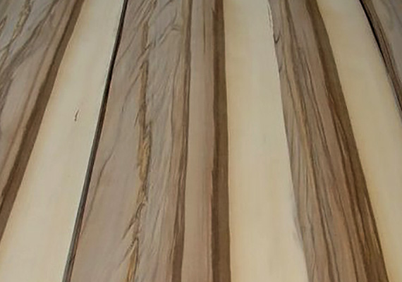 Red Gum - essenza legno ELITWOOD srl